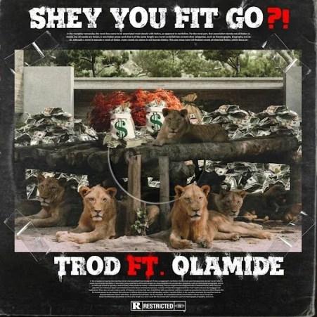 TROD Ft. Olamide – Shey You Fit Go?! mp3