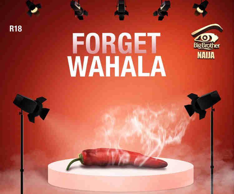 BBNaija 2019: Nigerians React As Organizers Release Date, Theme 'Forget Wahala'