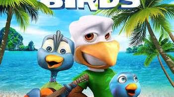 Crazy Birds 2019
