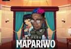 Zinoleesky Mapariwo Mp3