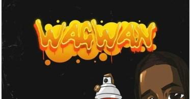 Wagwan By Laycon DOWNLOAD