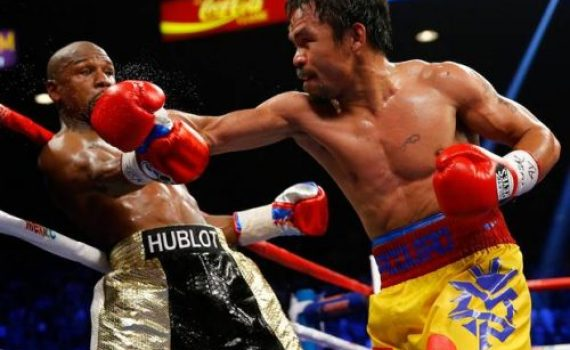 I REGRET COMPARING GAYS TO ANIMALS, BUT ...MANNY PACQUIAO