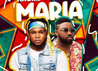 DOWNLOAD SONG: Naskid x Magnito – Maria