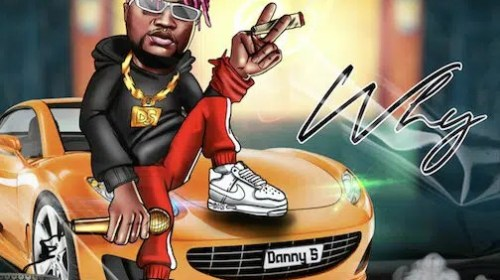DOWNLOAD MP3: Danny S – Why