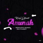 Krizbeatz ft. Reekado Banks & Rayvanny – Aminah