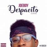 Joeboy – Despacito (Louis Fonsi Cover)