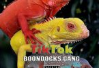 Boondocks Gang - TikTok (Audio + Video) Mp3 Mp4 Download
