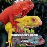 Boondocks Gang – TikTok (Audio + Video)