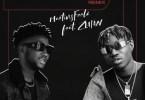 Martinsfeelz Ft. Zlatan - Unstoppable (Remix) Mp3 Audio Download