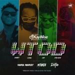 DJ Kaywise Ft. Mayorkun, Naira Marley, Zlatan – What Type of Dance (WTOD)