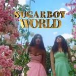 VIDEO: Minjin – Sugarboy (Remix) Ft. Korede Bello, DJ Big N