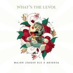 Major League & Abidoza – What's The Levol Album