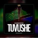 Harmonize – Tuvushe