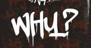 DJ Neptune – WHY ft Runtown [AuDio]