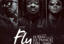 DJ Real Fly