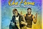 Patapaa One Perma Artwork