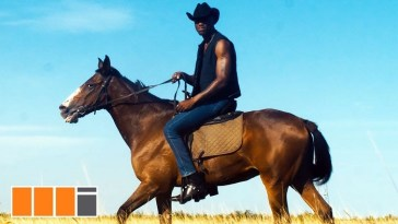 Joey B Stables Video