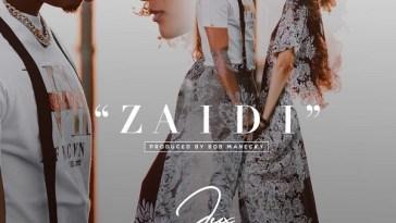 Jux Zaidi Artwork