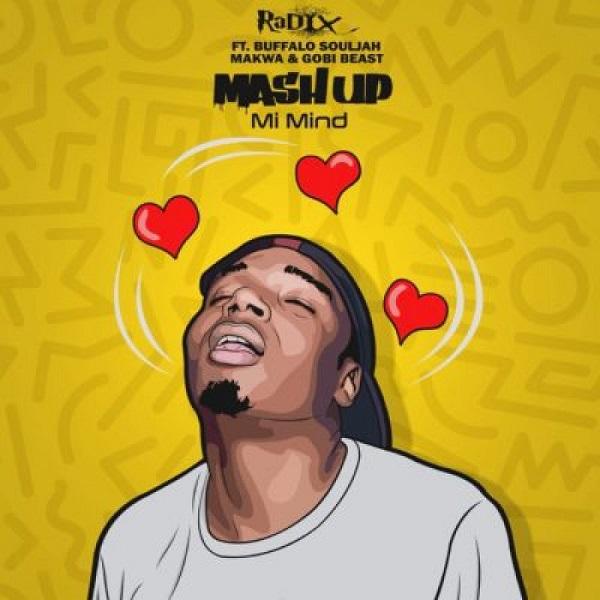 Download mp3 DJ Radix Mash Up Mi Mind ft Makwa Buffalo Souljah Gobi Beast mp3 download