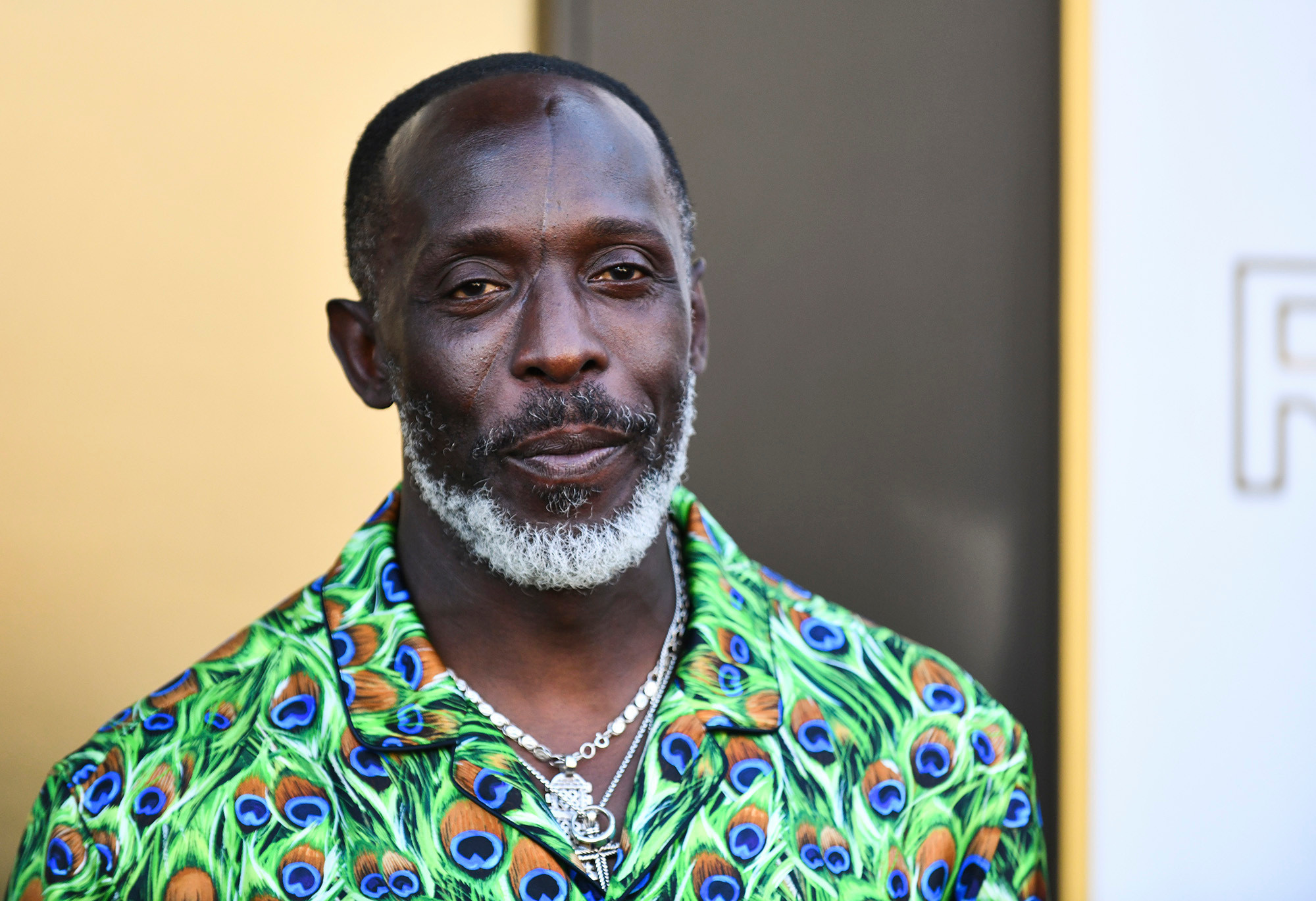 ?The Wire? Actor, Michael K. Williams dies of suspected heroin overdose at 54