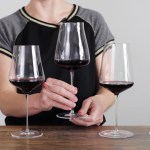 We Tested 5 of the World's Best Wine Glasses