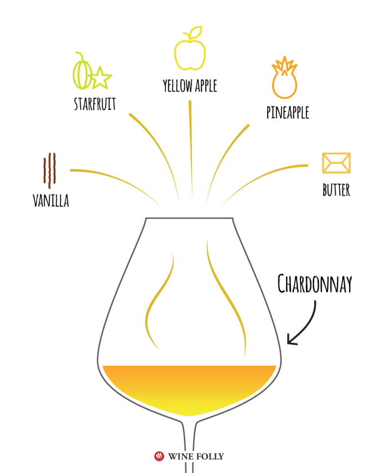 Chardonnay Tasting Notes - Illustration by Wine Folly