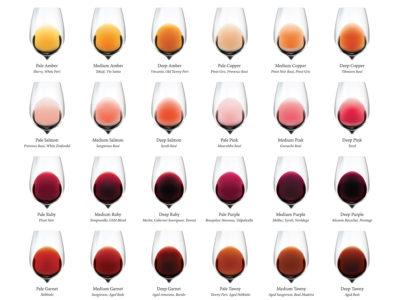 Wine Color Chart Excerpt