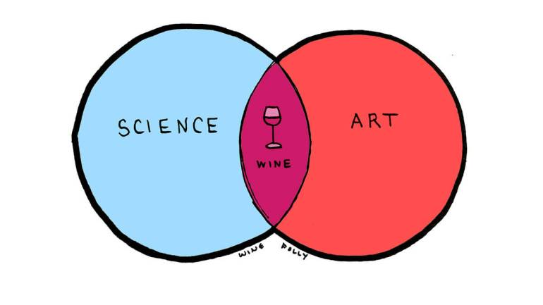 Science + Art = Wine - Illustration Concept by Wine Folly
