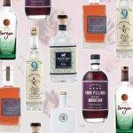 6-bottles-gin