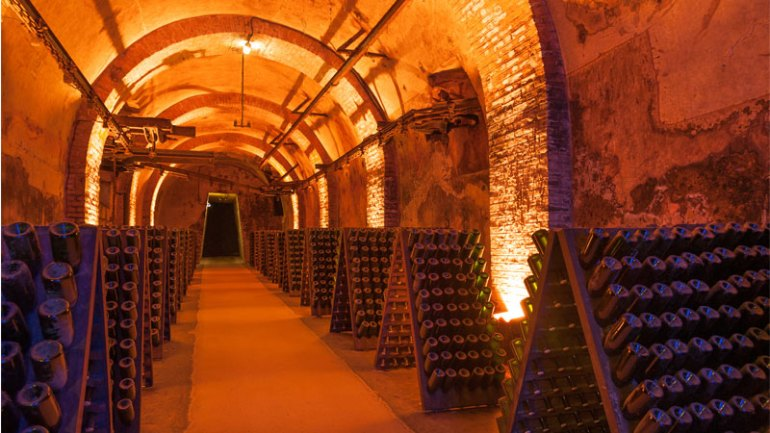 Champagne is one of the best wine vacation destinations!