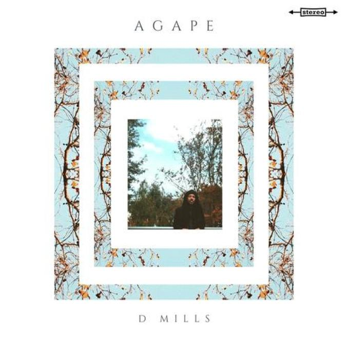 D Mills Ft. Jessica Childress & Milo Bloom – For You