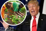 Donald Trump Blaming Africans' Poverty On Their Sexual Thoughts Is A Fake Quote