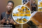 PHOTOS: Shatta Wale Buys A New Plant Worth $8,000 For His $1 Million Mansion
