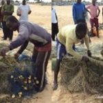 Woman who drowned caught alive by fishermen's net at Kasoa