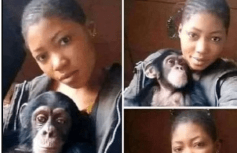 """WOW: I Will Rather DATE A MONKEY Than A Man, Because Monkeys Will Never CHEAT On Me"""" – Lady Says"""