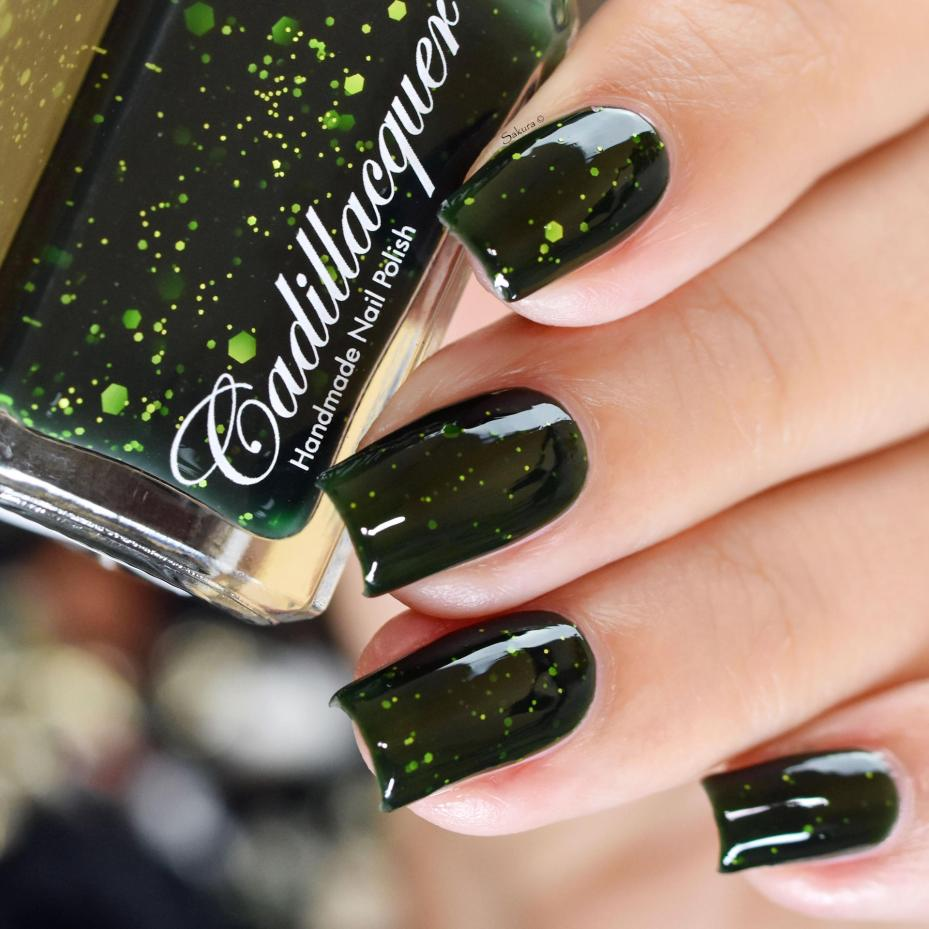 CADILLACQUER RIDDLE 6