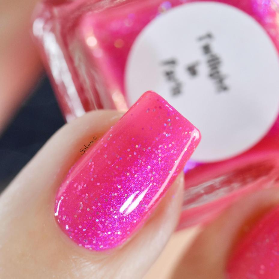GLAMPOLIsH TWILLIGHT IN PARIS (7)