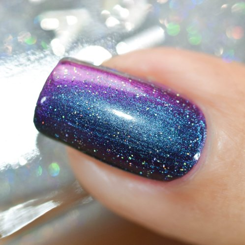 HOLO TACO PURPLE WITH ENVY SCATTER 3