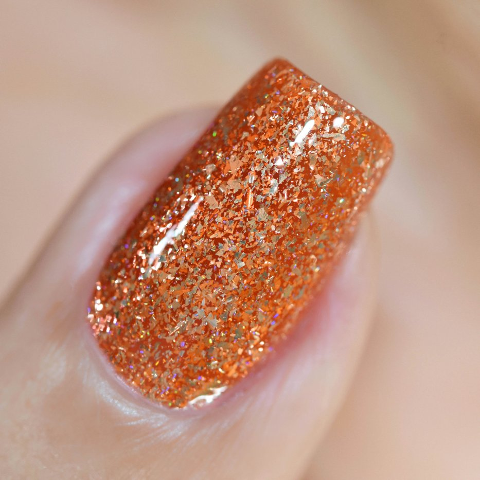 ILNP TRICK OR TREAT 5