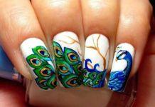 Peacock Design On White Polish