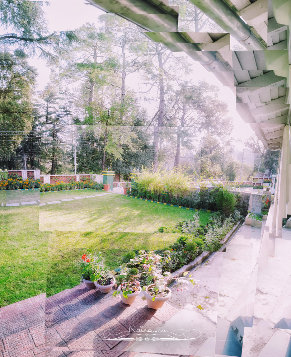 Ranikhet, Uttarakhand, Travel & Leisure Photography in the hills, photographed by Lifestyle & Luxury photographer & blogger Naina Redhu of Naina.co