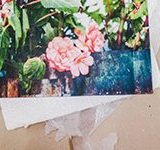 Photographs Print Canvas Printer CanvasPrint.in FlexiPrint.in Service Product Review Naina.co Photography Professional Photographer