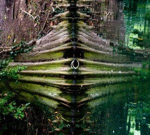 EyesForLondon-Kew-Botanical-Gardens-England-Naina.co-Raconteuse-Art-Nature-Photographer