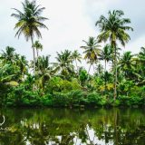 Kerala-Blog-Express-Entry-Naina-Redhu-Naina.co-Raconteuse-Luxury-Storyteller-Travel-Photographer
