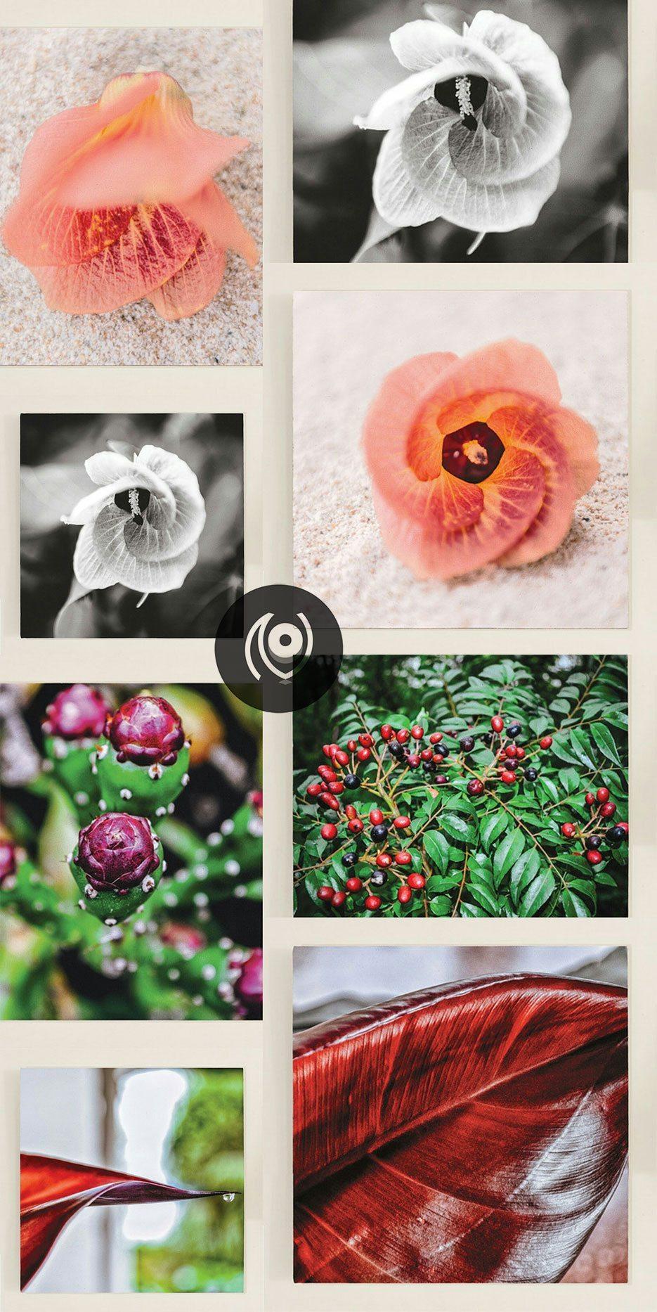 Naina.co-Photographer-Raconteuse-Storyteller-Luxury-Lifestyle-September-2014-WhatsUpNaina-Store-Prints-Framed-Canvas