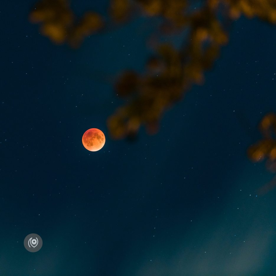 #SuperBloodMoon #EyesForNewYork #REDHUxNYC Naina.co Luxury & Lifestyle, Photographer Storyteller, Blogger