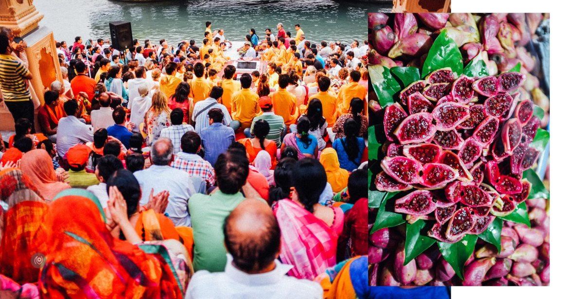 #REDHUxRISHIKESH, Rishikesh, Uttarakhand, Yoga Capital of the World, Ganges, Ganga, White Water Rafting, Bungy, Bungee, Flying Fox, Adventure Sports, Naina.co, Luxury Photographer, Lifestyle Photographer, Travel Photographer, Luxury Blogger, Lifestyle Blogger, Travel Blogger, Luxury & Lifestyle Photographer, #EyesForIndia, #EyesForDestinations
