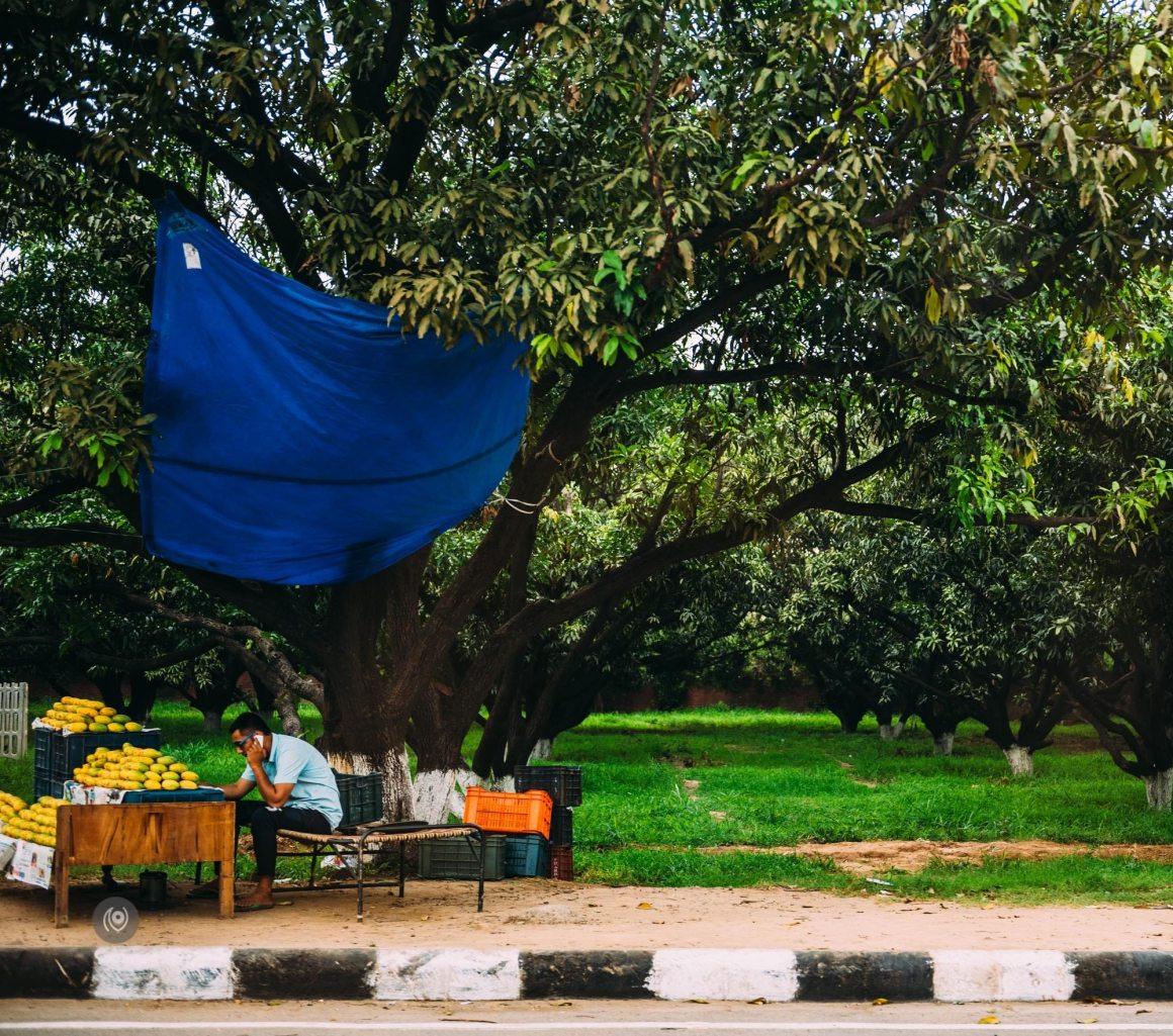 Naina.co-Luxury-Lifestyle-Photographer-Blogger-REDHUxTheLalit-Travel-EyesForDestinations-Chandigarh-04b