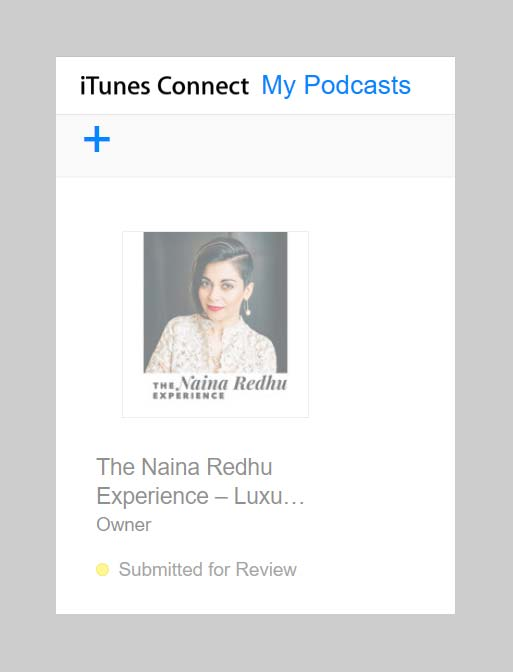 naina-co-luxury-lifestyle-photographer-blogger-podcast-thenainaredhuexperience-in-review