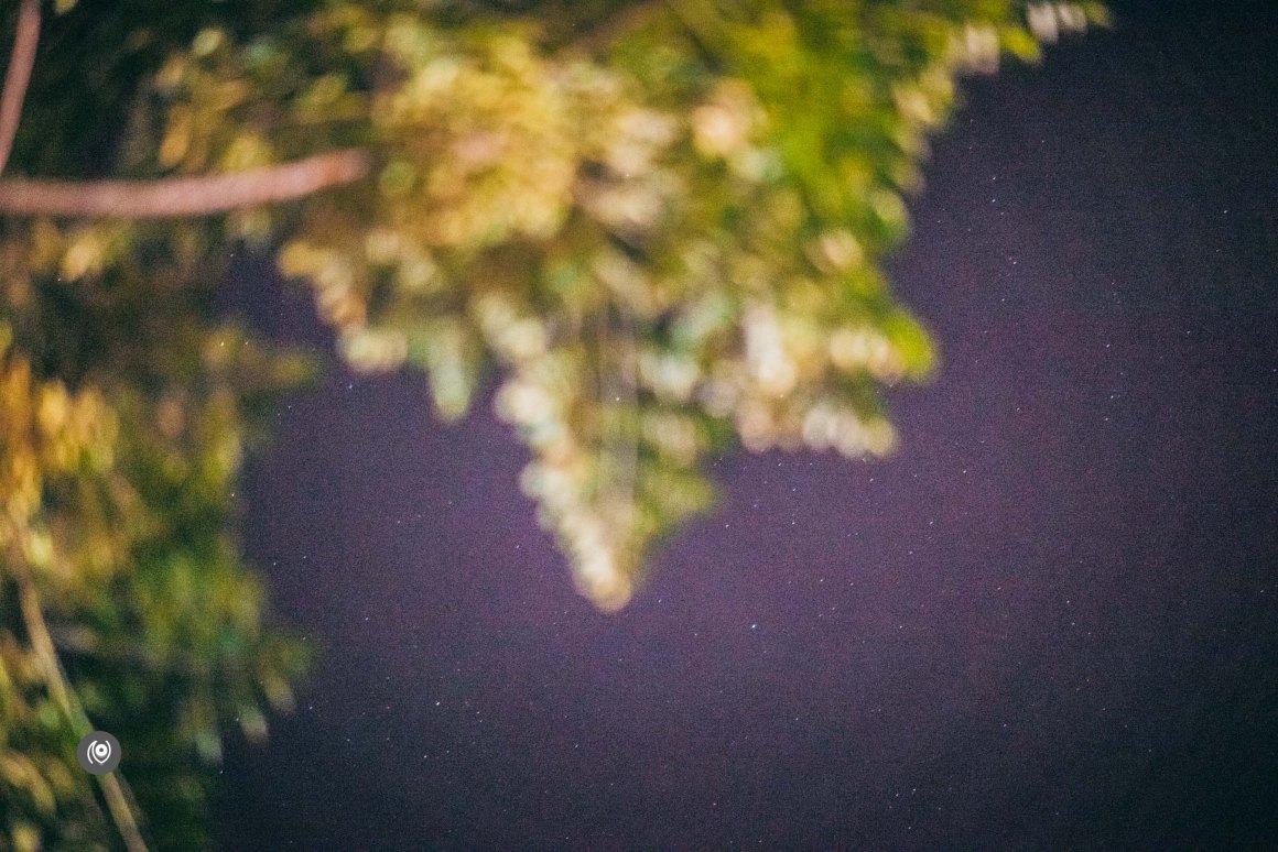 Naina.co, Naina Redhu, Luxury Blogger, Luxury Photographer, Lifestyle Photographer, Lifestyle Blogger, EyesForIndia, EyesForGurgaon, EyesForGurugram, Walking, Evening, Night, Stars, Trees, Walk at night, Night Photography, Night Photographer, Power, Electricity, Roads,